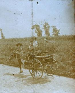 Kinderen met bokkewagen